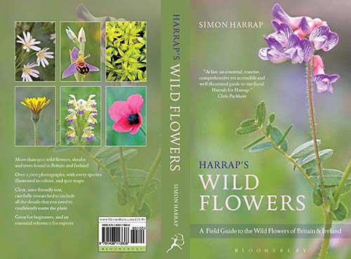 Harraps Wild Flowers cover